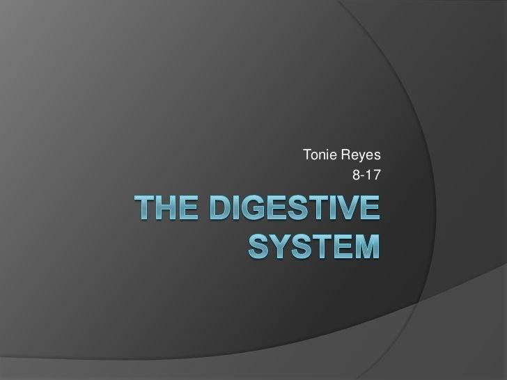 The Digestive System<br />Tonie Reyes <br />8-17<br />