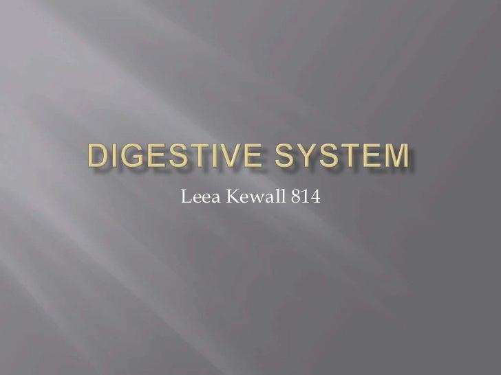 Digestive System<br />LeeaKewall 814<br />