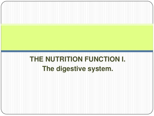 THE NUTRITION FUNCTION I. The digestive system.