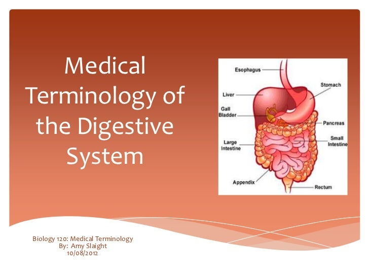 MedicalTerminology of the Digestive    SystemBiology 120: Medical Terminology         By: Amy Slaight            10/08/2012