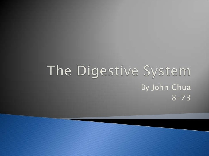 The Digestive System <br />By John Chua<br />8-73<br />