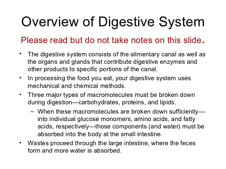 digestive system essay conclusion Fetal pig anatomy: digestive system poison it gathers sound and directs it into the external auditory canal we will write a custom essay sample on any topic.