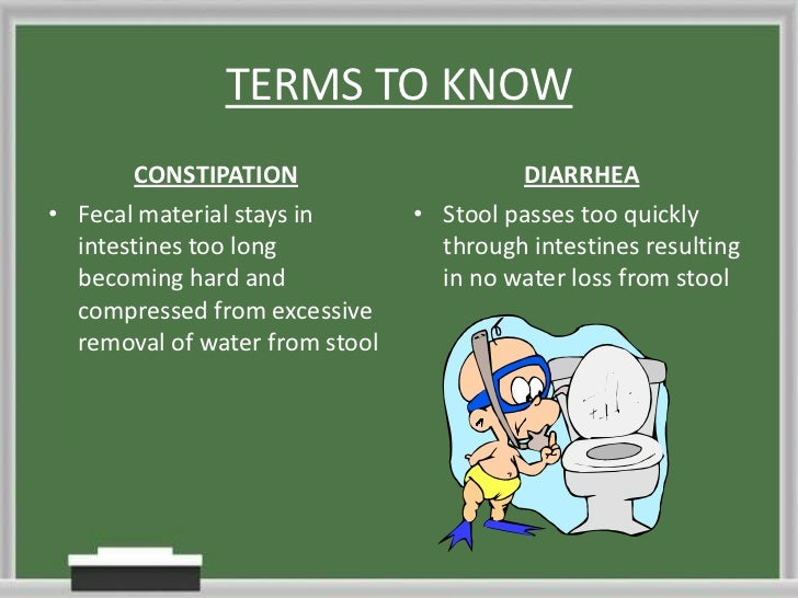 Digestive System Presentation Bus 116