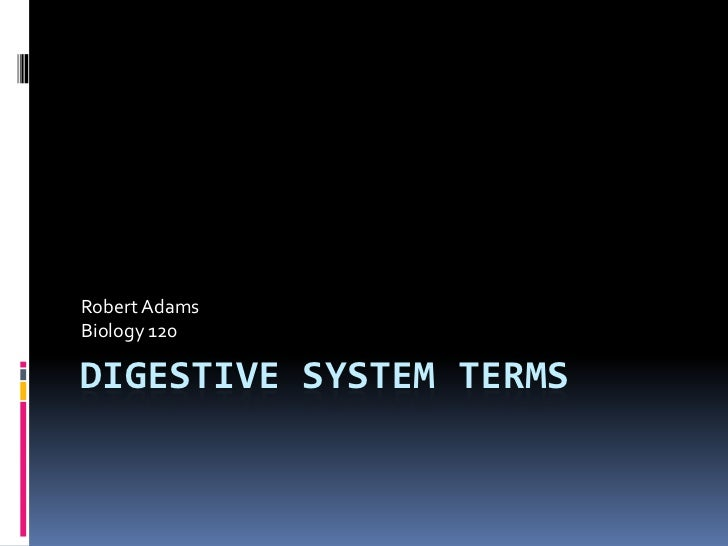 Digestive System Terms<br />Robert Adams<br />Biology 120<br />