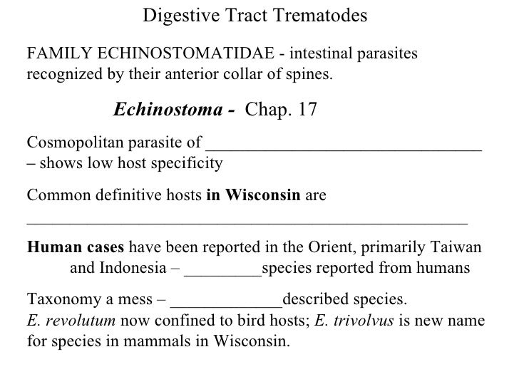 Digestive Tract Trematodes FAMILY ECHINOSTOMATIDAE - intestinal parasites recognized by their anterior collar of spines. ...