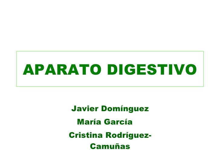APARATO DIGESTIVO Javier Domínguez María García  Cristina Rodríguez-Camuñas