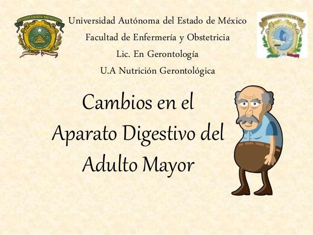 Cambios en el Aparato Digestivo del Adulto Mayor Universidad Autónoma del Estado de México Facultad de Enfermería y Obstet...