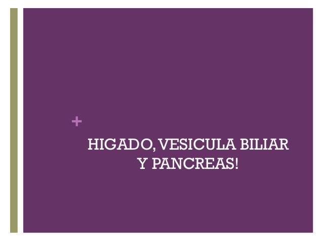 + HIGADO,VESICULA BILIAR Y PANCREAS!