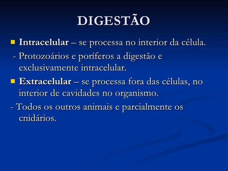 DIGESTÃO <ul><li>Intracelular  – se processa no interior da célula.  </li></ul><ul><li>- Protozoários e poríferos a digest...