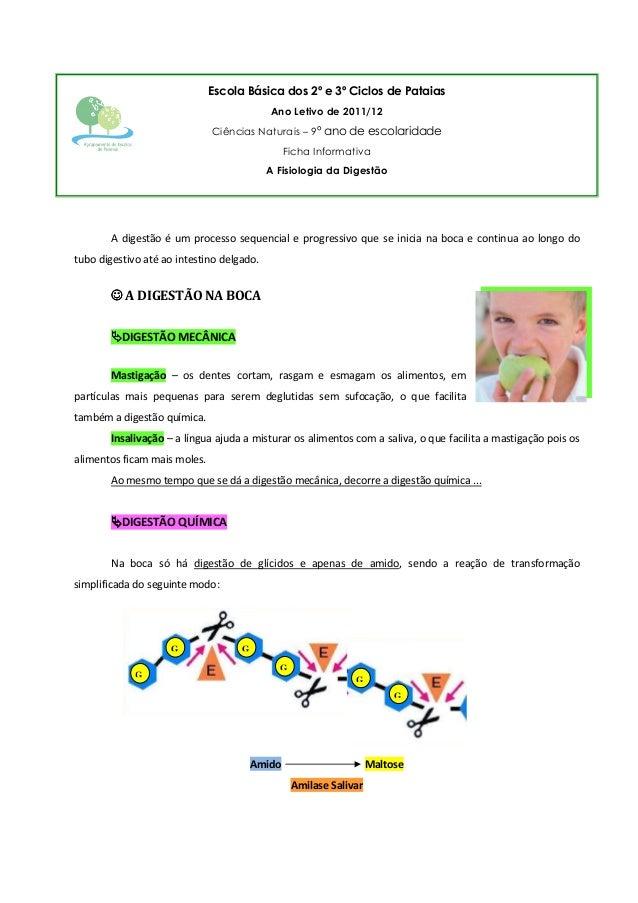 Escola Básica dos 2º e 3º Ciclos de Pataias Ano Letivo de 2011/12 Ciências Naturais – 9º ano de escolaridade Ficha Informa...