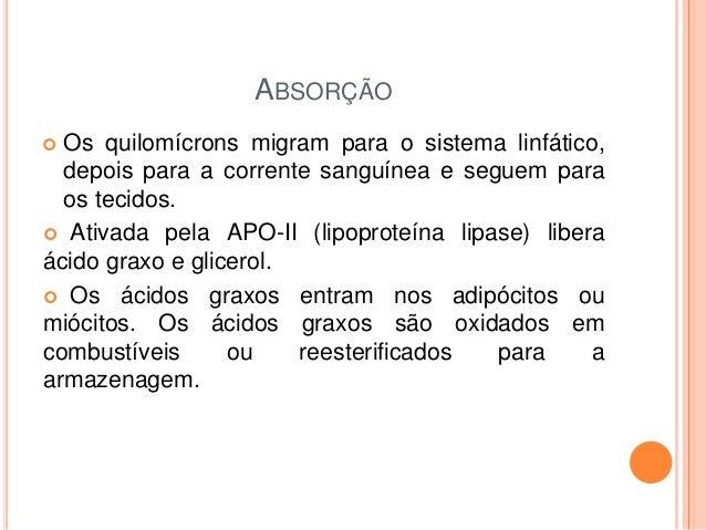REFERÊNCIAS UNIPE, Universidade Paulista. Digestão de Lipídios. Disponível em: http://adm.online.unip.br/img_ead_dp/36252....