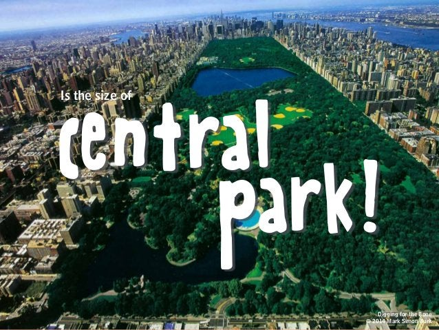 central park! Is the size of Digging for the Bone © 2014 Mark Simon Burk
