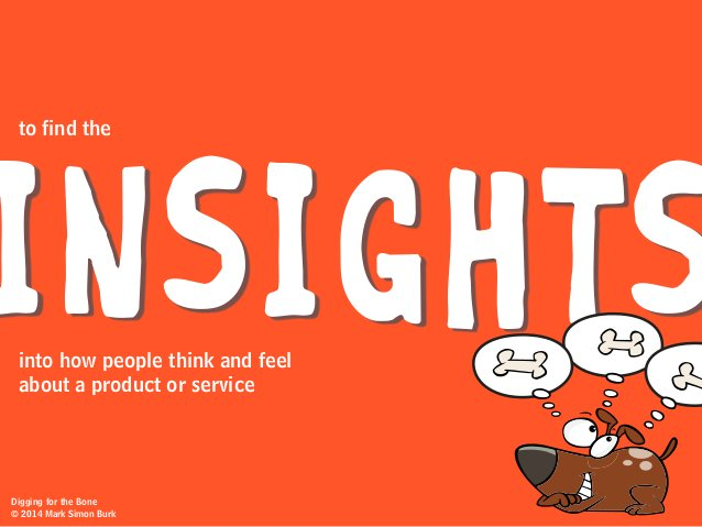 INSIGHTS to find the into how people think and feel about a product or service Digging for the Bone © 2014 Mark Simon Burk