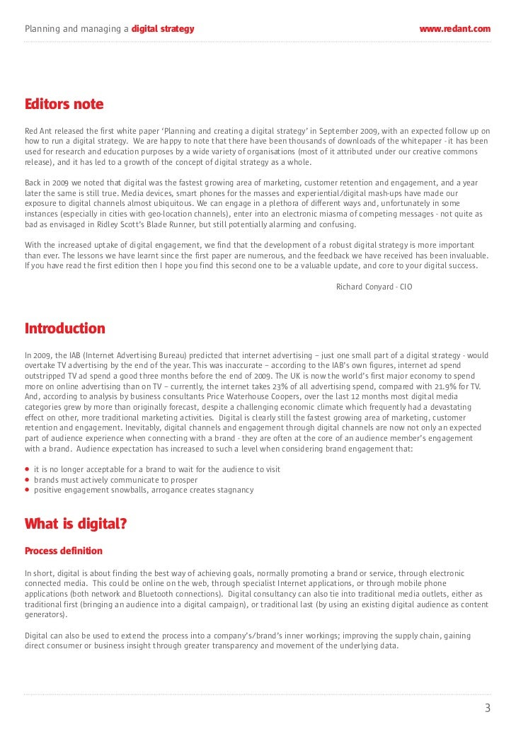 Red Ant Digital Strategy Whitepaper 2011