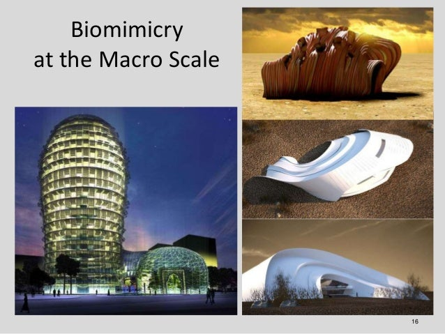 Biomimicryat the Macro Scale                     16