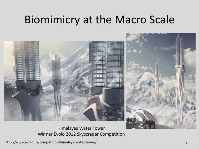 Biomimicry at the Macro Scale                           Himalayas Water Tower                  Winner Evolo 2012 Skyscrape...