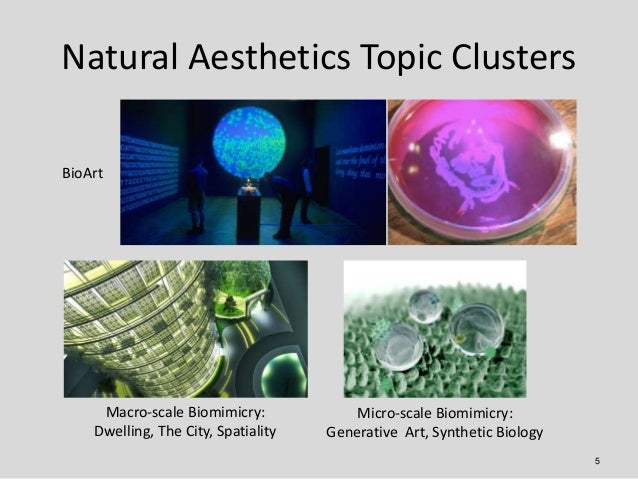 Natural Aesthetics Topic ClustersBioArt     Macro-scale Biomimicry:             Micro-scale Biomimicry:    Dwelling, The C...