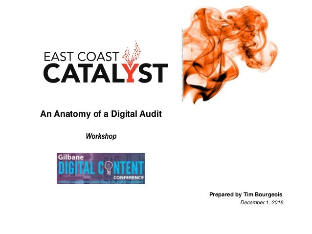 An Anatomy of a Digital Audit Workshop Prepared by Tim Bourgeois December 1, 2016