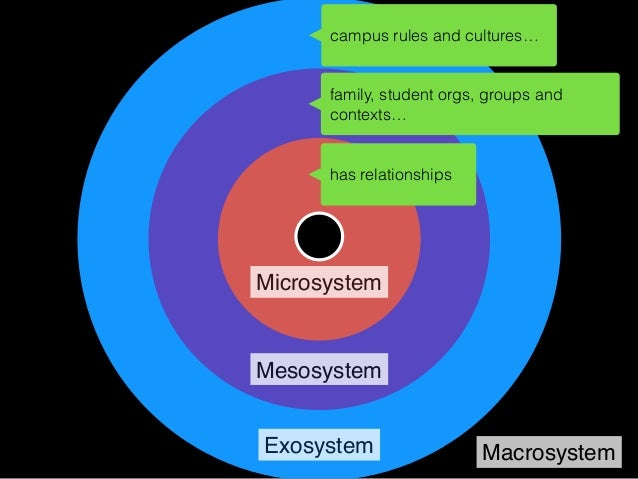 Microsystem Mesosystem Exosystem Macrosystem Online interactions with other individuals are placed within the microsystem ...