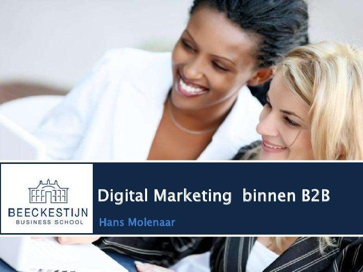 Digital Marketing  binnen B2B<br />Hans Molenaar <br />