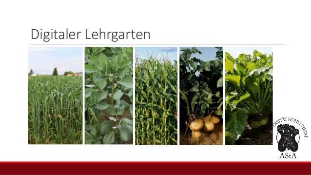 Digitaler Lehrgarten