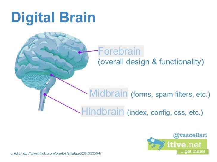 Digital Brain                                                      Forebrain                                              ...