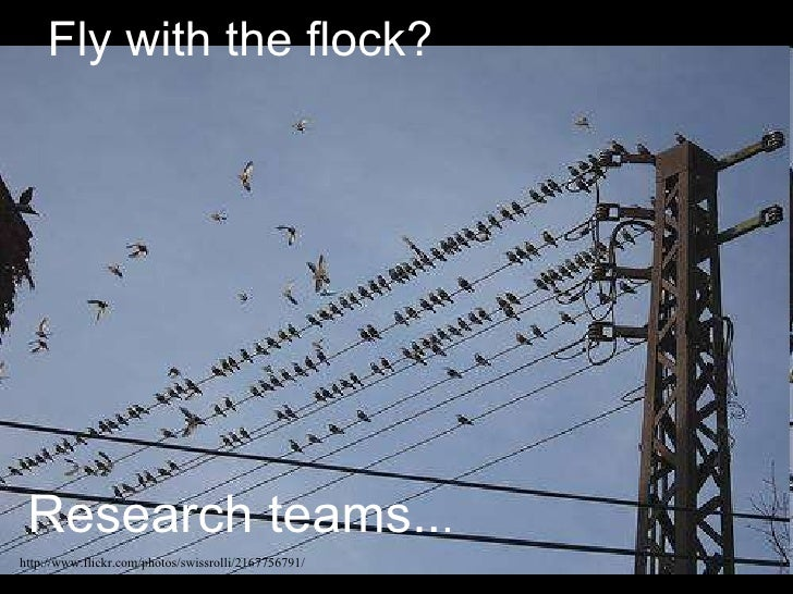 Fly with the flock? Research teams.. . http://www.flickr.com/photos/swissrolli/2167756791/
