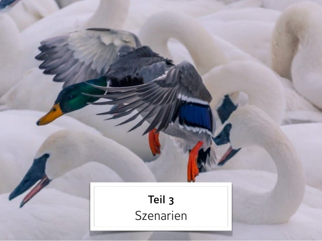 Szenario 3 »personalisiertes« Lernen
