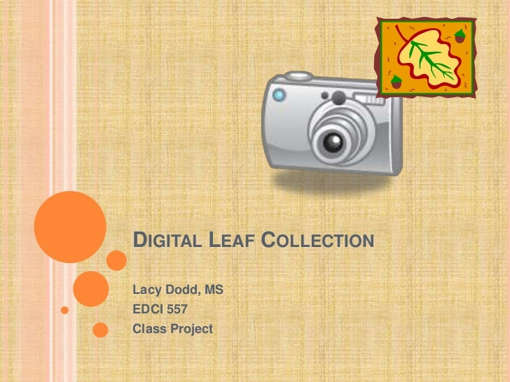 Digital Leaf Collection<br />Lacy Dodd, MS<br />EDCI 557<br />Class Project<br />