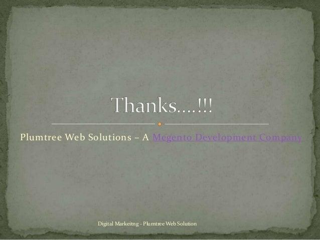 Plumtree Web Solutions – A Megento Development Company  Digital Markeitng - Plumtree Web Solution