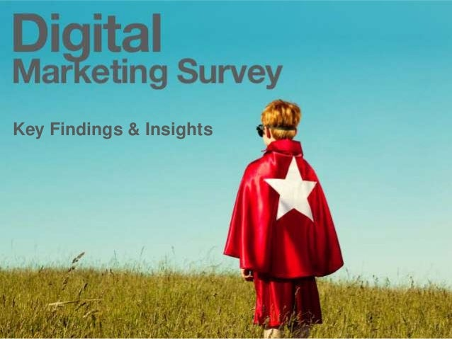 Key Findings & Insights