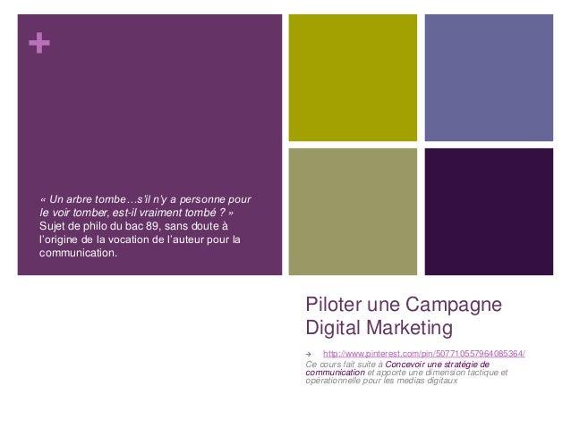 + Piloter une Campagne Digital Marketing  http://www.pinterest.com/pin/507710557964085364/ Ce cours fait suite à Concevoi...