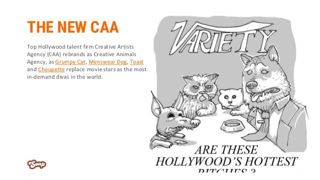 THE NEW CAA Top Hollywood talent firm Creative Artists Agency (CAA) rebrands as Creative Animals Agency, as Grumpy Cat, Me...