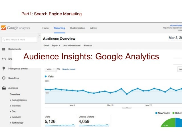 Audience Insights: Facebook Insights Part1: Search Engine Marketing