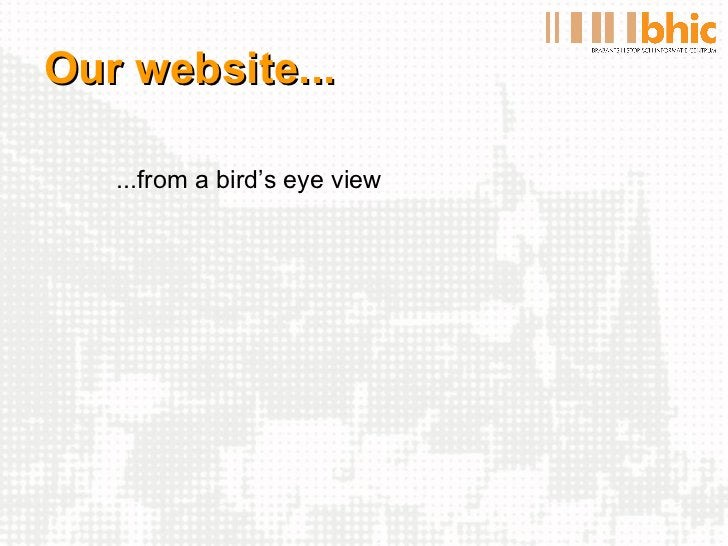 Our website... <ul><li>...from a bird's eye view </li></ul>