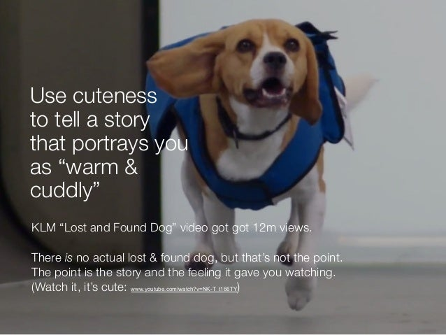"""KLM """"Lost and Found Dog"""" video got got 12m views. There is no actual lost & found dog, but that's not the point. The point..."""