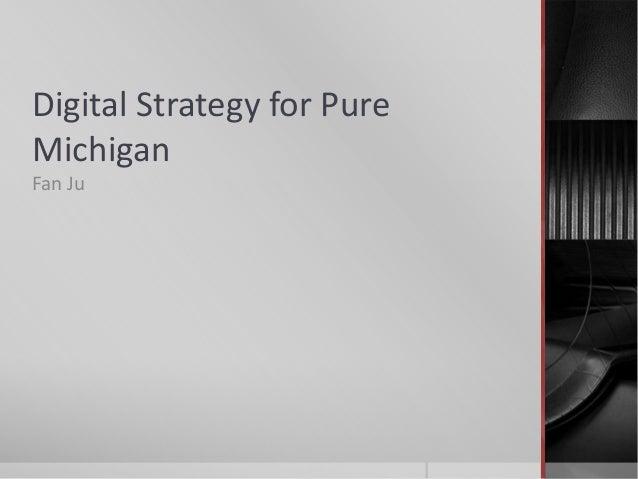 Digital Strategy for PureMichiganFan Ju