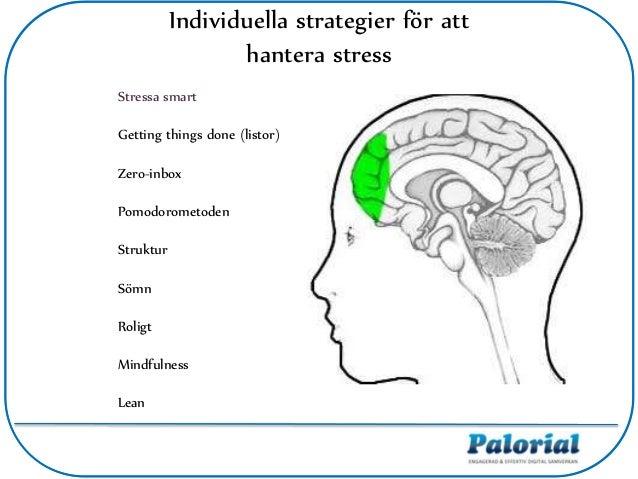 Individuella strategier för att hantera stress Stressa smart Getting things done (listor) Zero-inbox Pomodorometoden Struk...