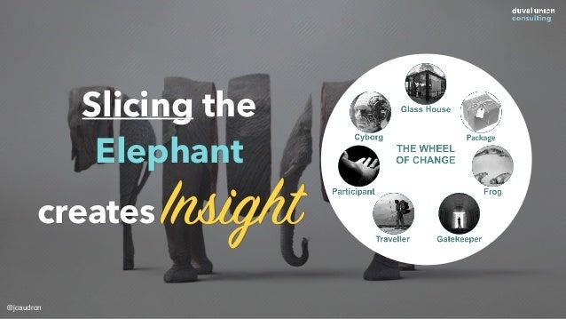 Slicing the Elephant creates Insight @jcaudron