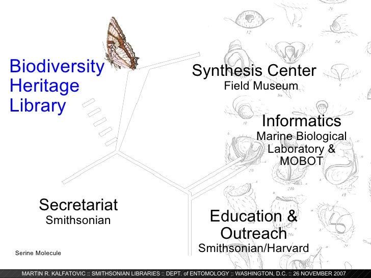 Digitizing Entomology: The Biodiversity Heritage Library