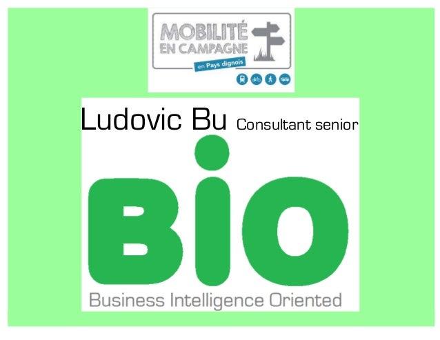 Ludovic Bu Consultant senior