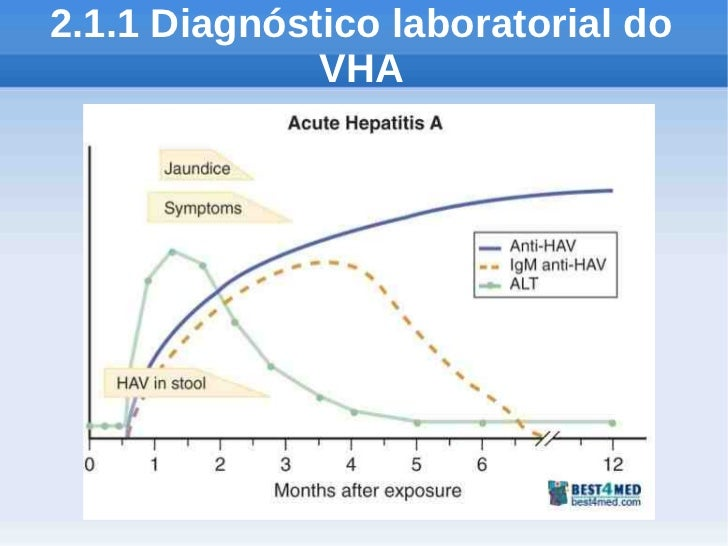 2.1.1 Diagnóstico laboratorial do              VHA