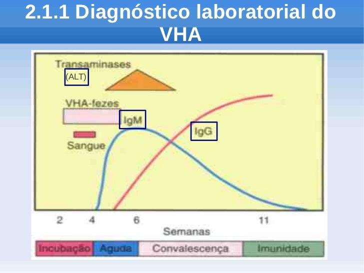 2.1.1 Diagnóstico laboratorial do              VHA    (ALT)