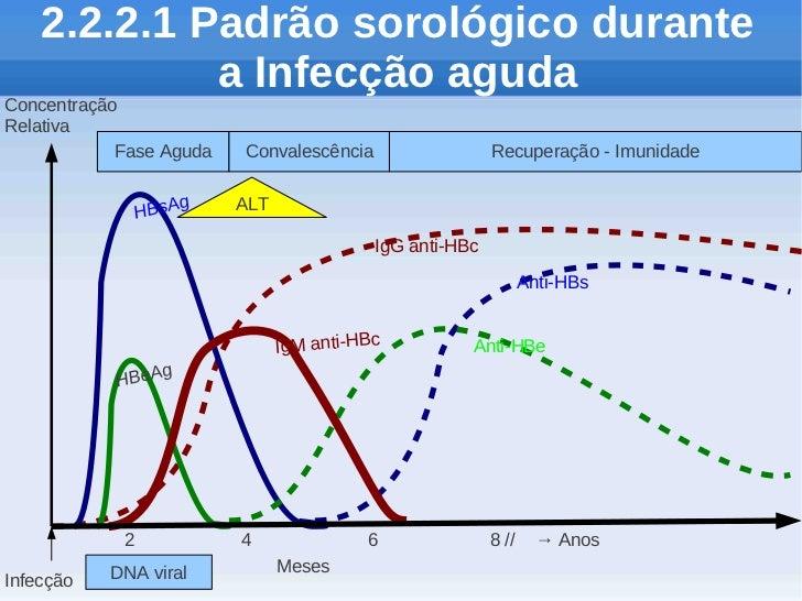 2.2.2.1 Padrão sorológico durante             a Infecção agudaConcentraçãoRelativa            Fase Aguda   Convalescência ...