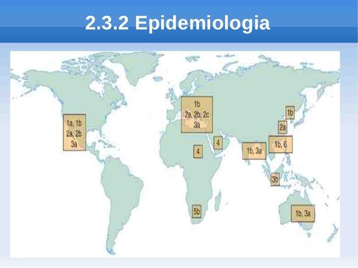 2.3.2 Epidemiologia