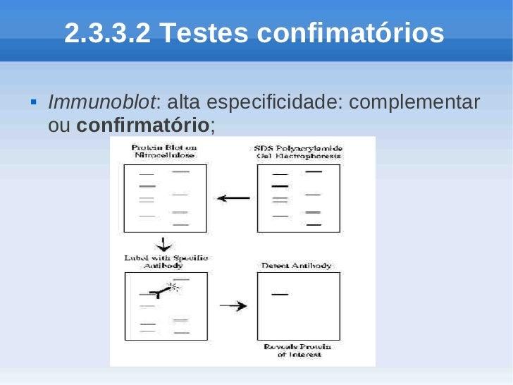 2.3.3.2 Testes confimatórios   Immunoblot: alta especificidade: complementar    ou confirmatório;