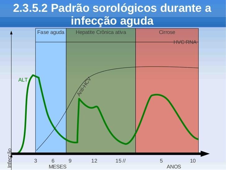 2.3.5.2 Padrão sorológicos durante a                      infecção aguda                     Fase aguda    Hepatite Crônic...