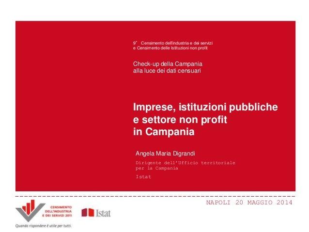 NAPOLI 20 MAGGIO 2014 Principali innovazioni e risultati del Censimento Censimento dell'industria e dei servizi 2011 ANDRE...