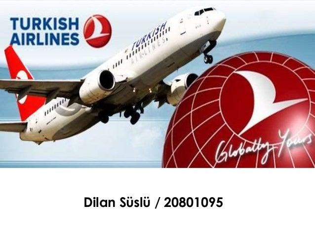 Dilan Süslü / 20801095