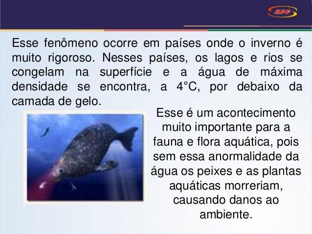 Esse fenômeno ocorre em países onde o inverno é muito rigoroso. Nesses países, os lagos e rios se congelam na superfície e...